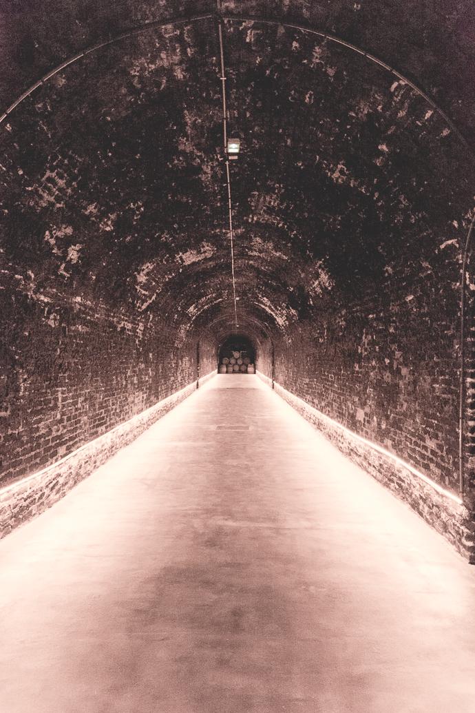 Ballade dans les caves Lanson à Reims