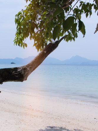 Plages paradisiaques, faire la fête et boire pas cher : les avantages de l'île de Langkawi en Malaisie