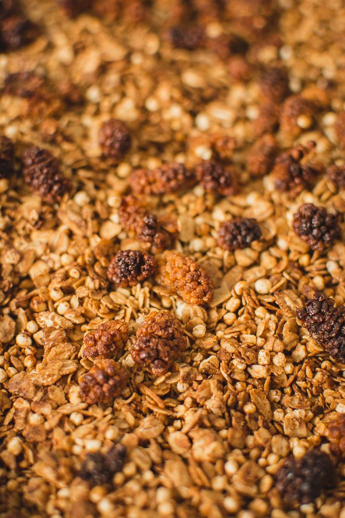 recette-vrac-granola-bio-soja-proteine-geekette-cuisine