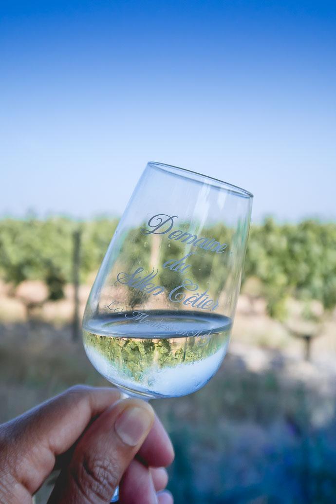 Le Gros Plant - un vin simple idéal pour un apéritif dans les vignes