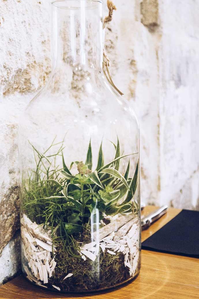 Un terrarium pour agrémenter la déco