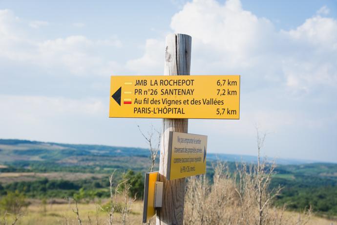 AOC Bouzeron, à cheval entre Santenay et Rully