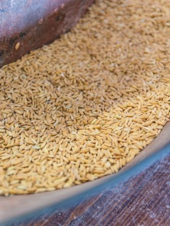 La Maison du Riz de Camargue -découverte de la fabrication du riz de Camargue