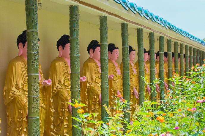 Ligne de boudhas, Kek Lok Si Temple, Penang, Malaisie
