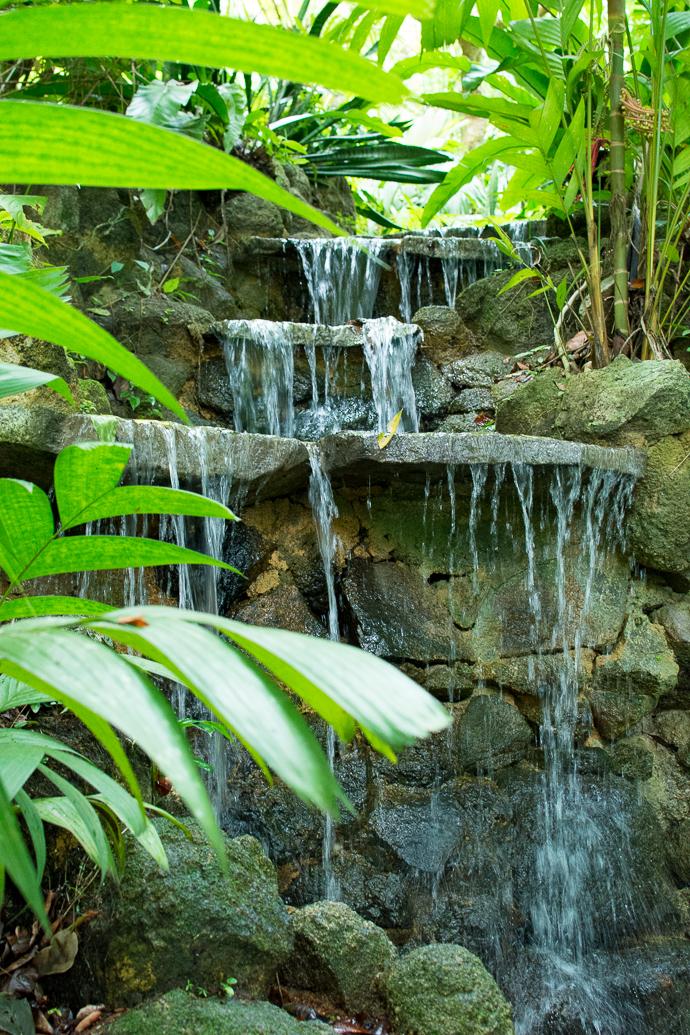 Cascade d'eau au Tropical Spice Garden, Penang, Malaisie
