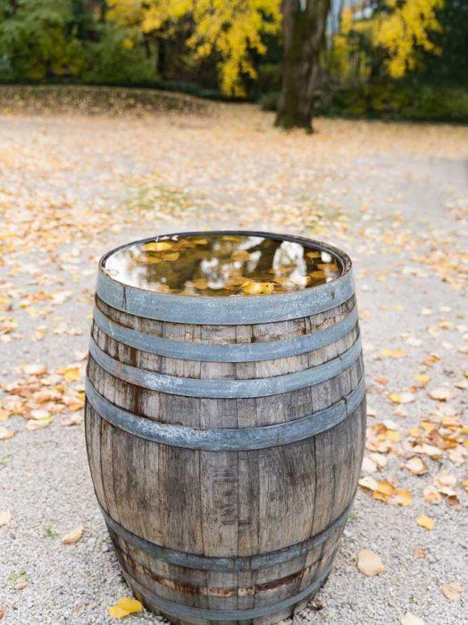 Tout savoir sur les vins du Jura - Appellations, cépages, richesse gastronomique