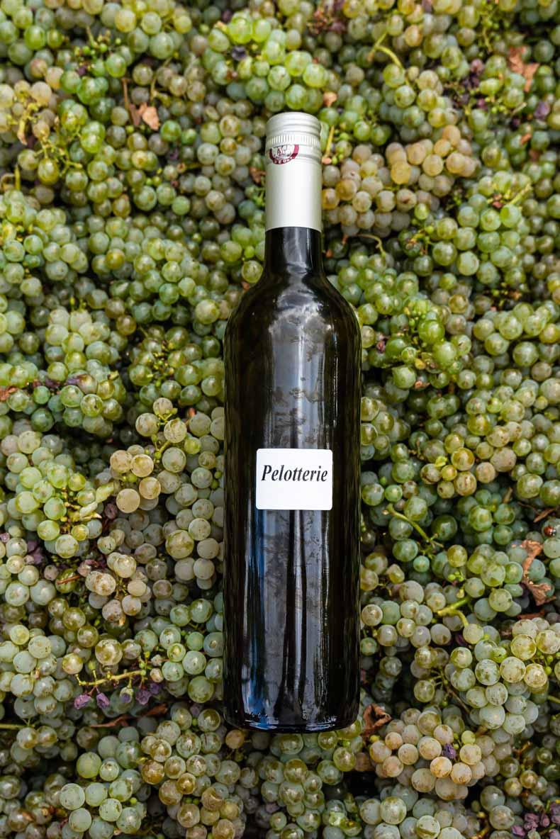 Accords mets & vins - découvrez mes astuces et ma sélection de recettes pour du vin blanc