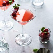 Cocktail facile - le Gin Fizz à la rhubarbe
